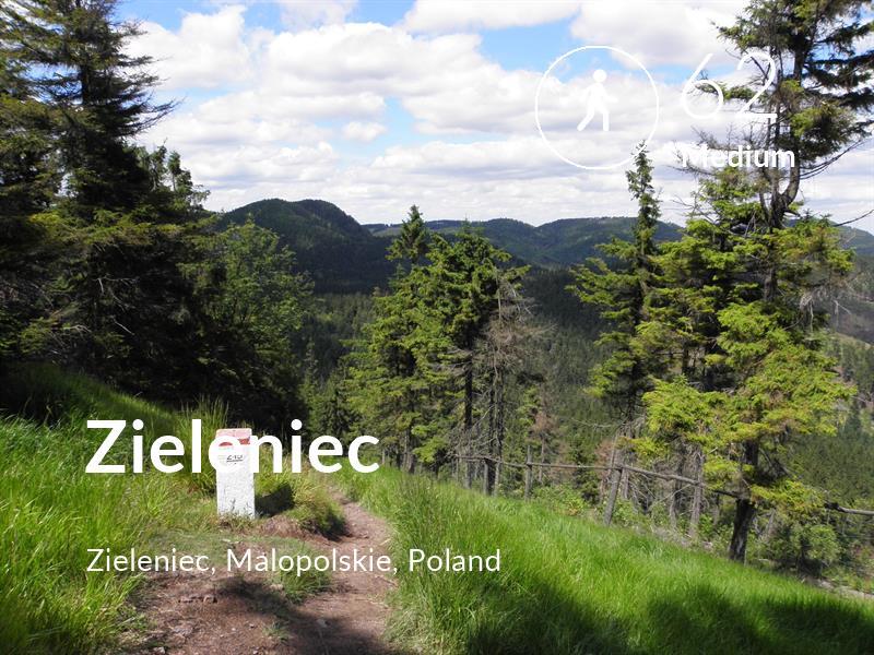Walking comfort level is 62 in Zieleniec